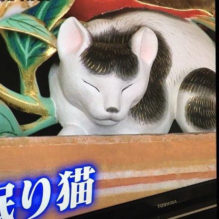 バンボさんの背景画像