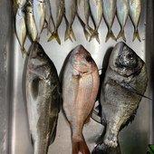 週末釣りFAMさんのプロフィール画像