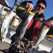 魚紳のプロフィール画像