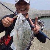 tamatamanのプロフィール画像