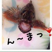 レイコさんのプロフィール画像