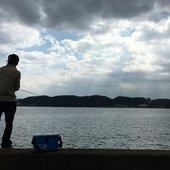 HIRO さんのプロフィール画像