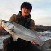 小宮 大輔(シオメ)さんのプロフィール画像