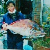 松田哲郎さんのプロフィール画像