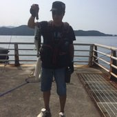 Masato Miyoshi さんのプロフィール画像