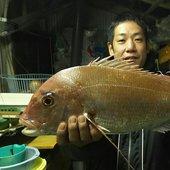 伊藤  渉さんのプロフィール画像