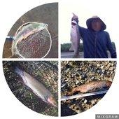 kuma ayuのプロフィール画像