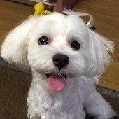 勝さんのプロフィール画像