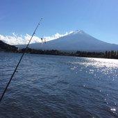 釣り初心者さんのプロフィール画像