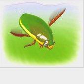 ゲンゴロウ(Team邪道)のプロフィール画像