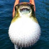 taka-piloさんのプロフィール画像