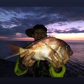 flounderのプロフィール画像