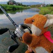釣り吉お稲荷ちゃんさんのプロフィール画像