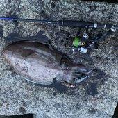 三度の飯より釣りが好きさんのプロフィール画像