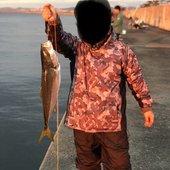 釣り初心者さんのアイコン
