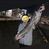 釣り人Rさんのプロフィール画像