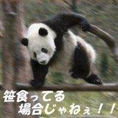 Katohayaさんのアイコン