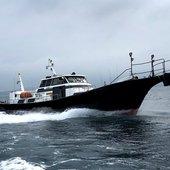 薩摩 遊漁船団 糸のプロフィール画像
