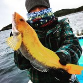 釣り人 遊さんのプロフィール画像