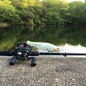琵琶湖Basserのプロフィール画像