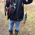 ラテス41さんの大分県玖珠郡での釣果写真