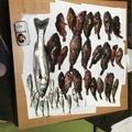 ヌバさんの福岡県久留米市での釣果写真