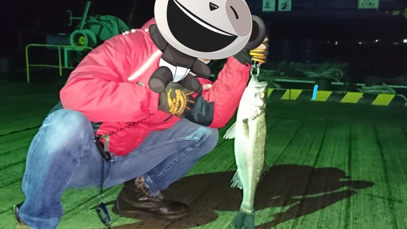 そうたさんの投稿画像,写っている魚はスズキ