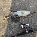 るーさんの三重県熊野市でのアオリイカの釣果写真