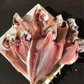 まささんの千葉県鴨川市でのアジの釣果写真