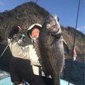 Harryさんの福岡県福岡市でのクロダイの釣果写真