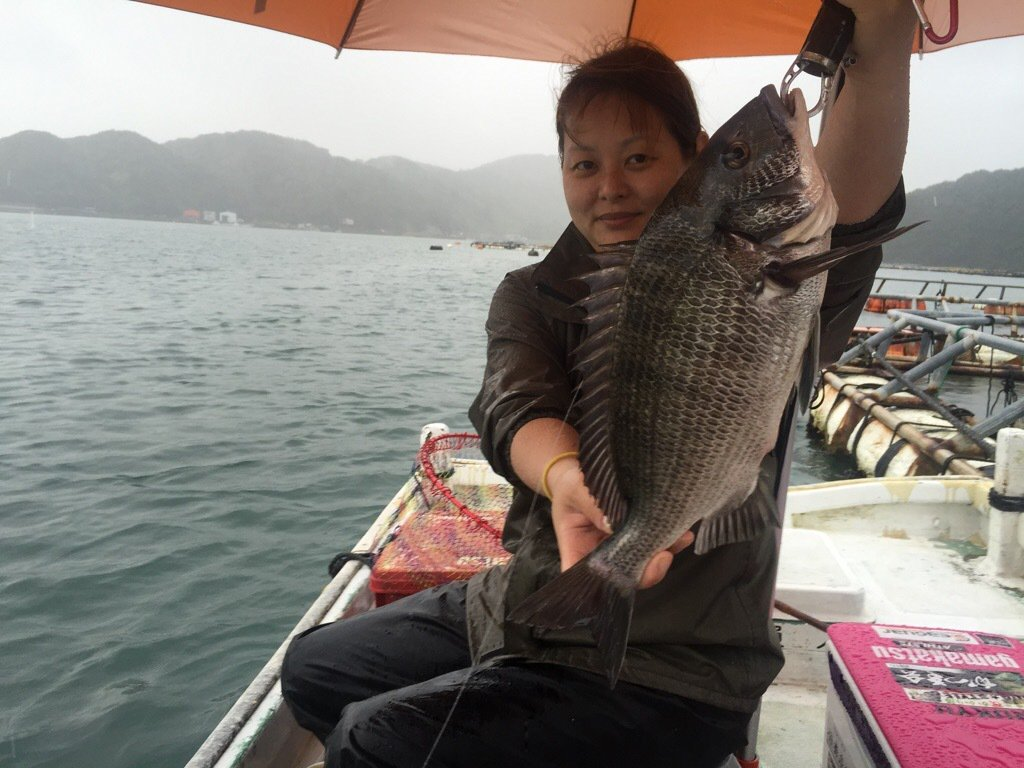 きみ☆チヌlove♡さんの投稿画像,写っている魚はクロダイ