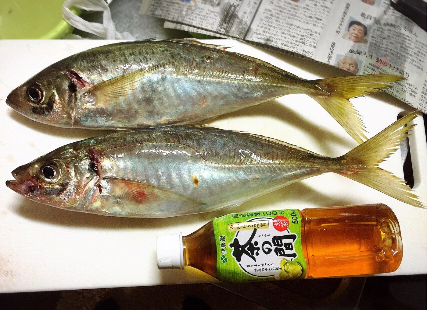 きみ☆チヌlove♡さんの投稿画像,写っている魚はアジ