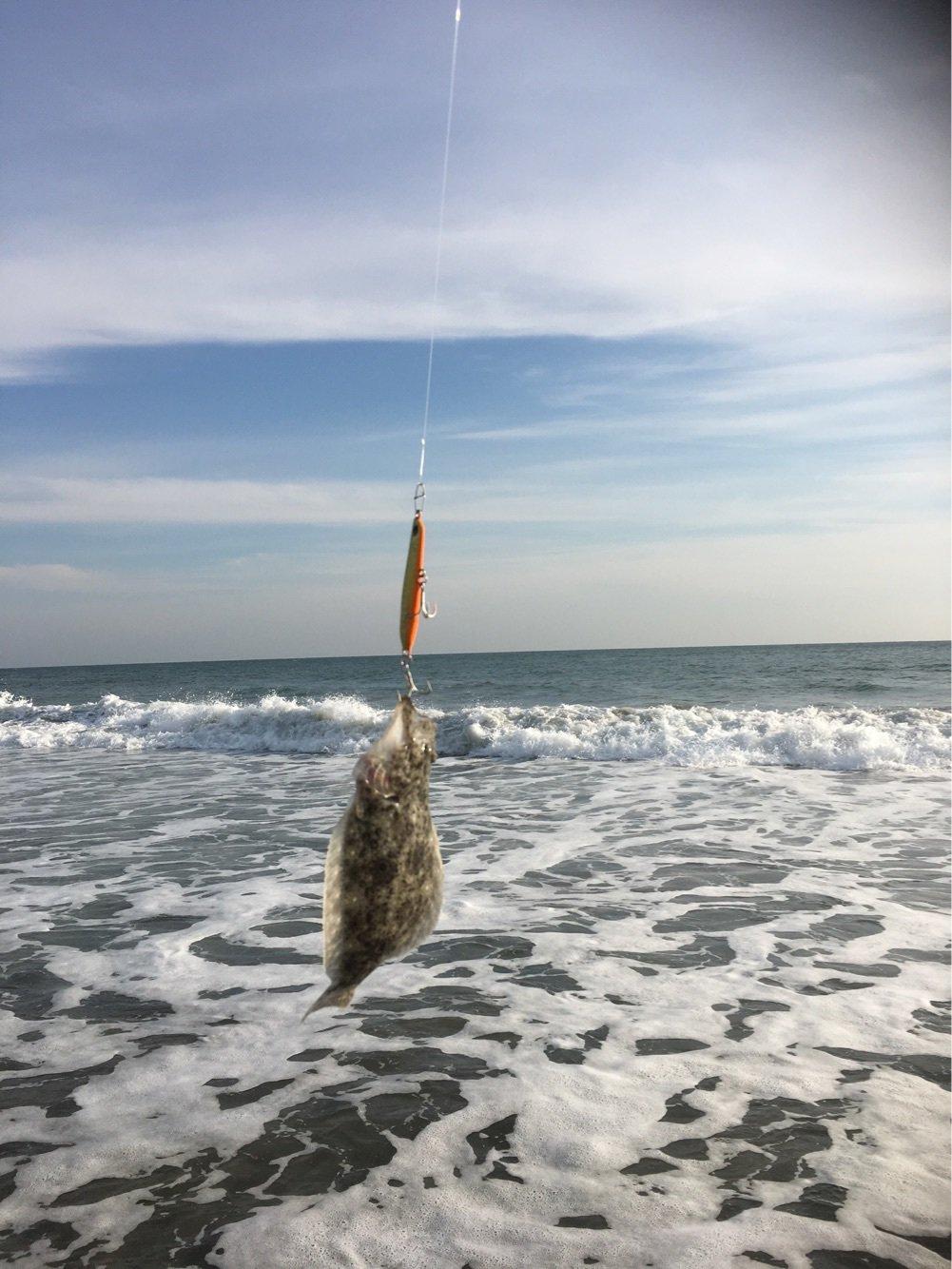 Hideさんの投稿画像,写っている魚はヒラメ