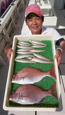 ジョーコーギーさんの投稿画像,写っている魚はシロギス