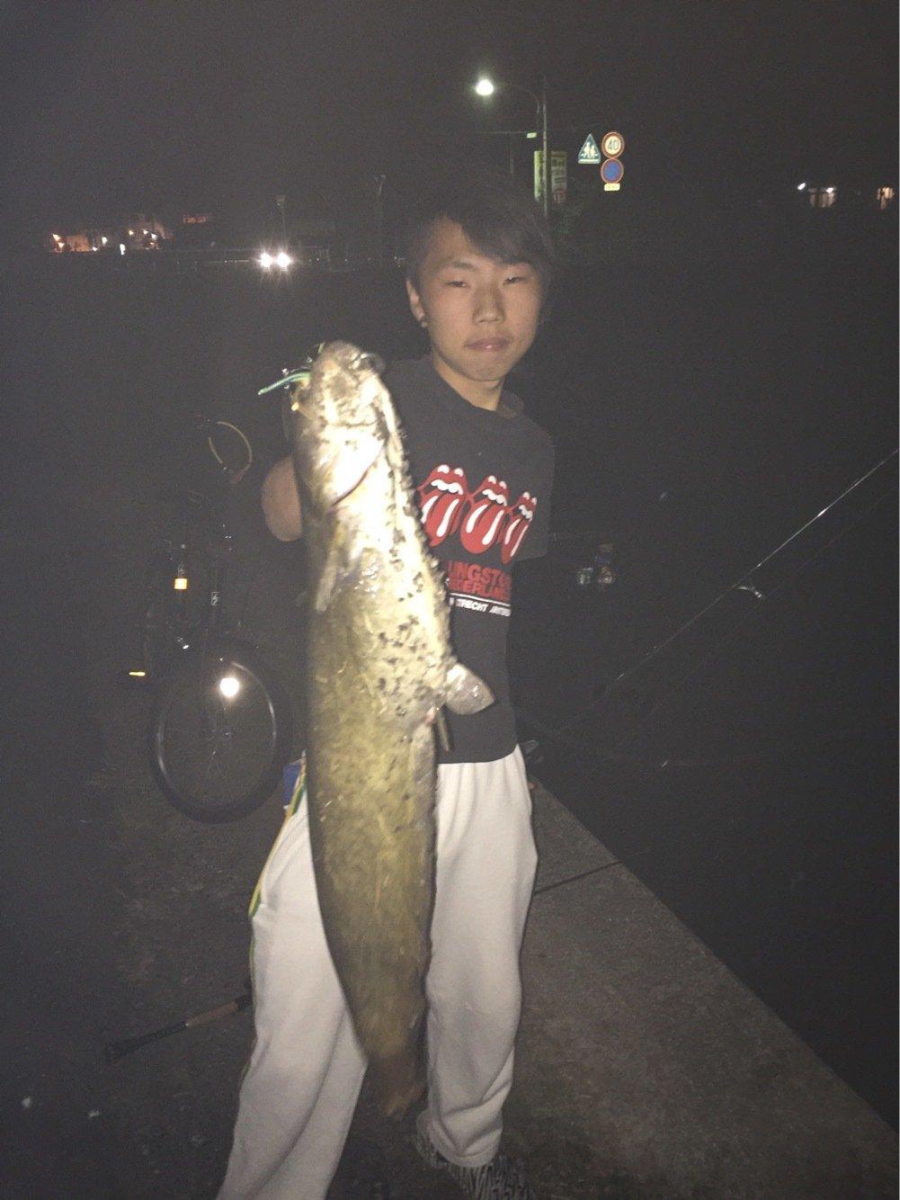 Rさんの投稿画像,写っている魚はナマズ