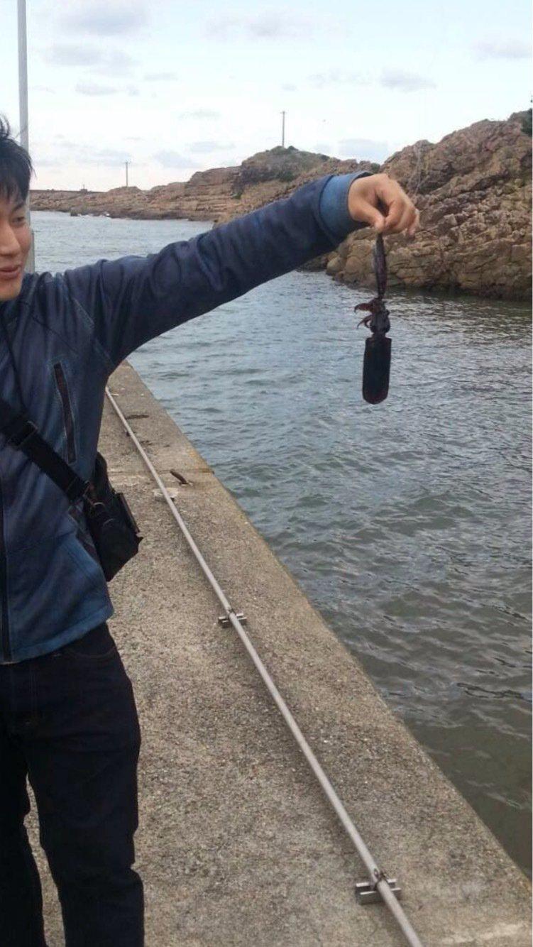 ともやさんの投稿画像,写っている魚はアオリイカ