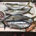 ジローさんの福岡県直方市での釣果写真