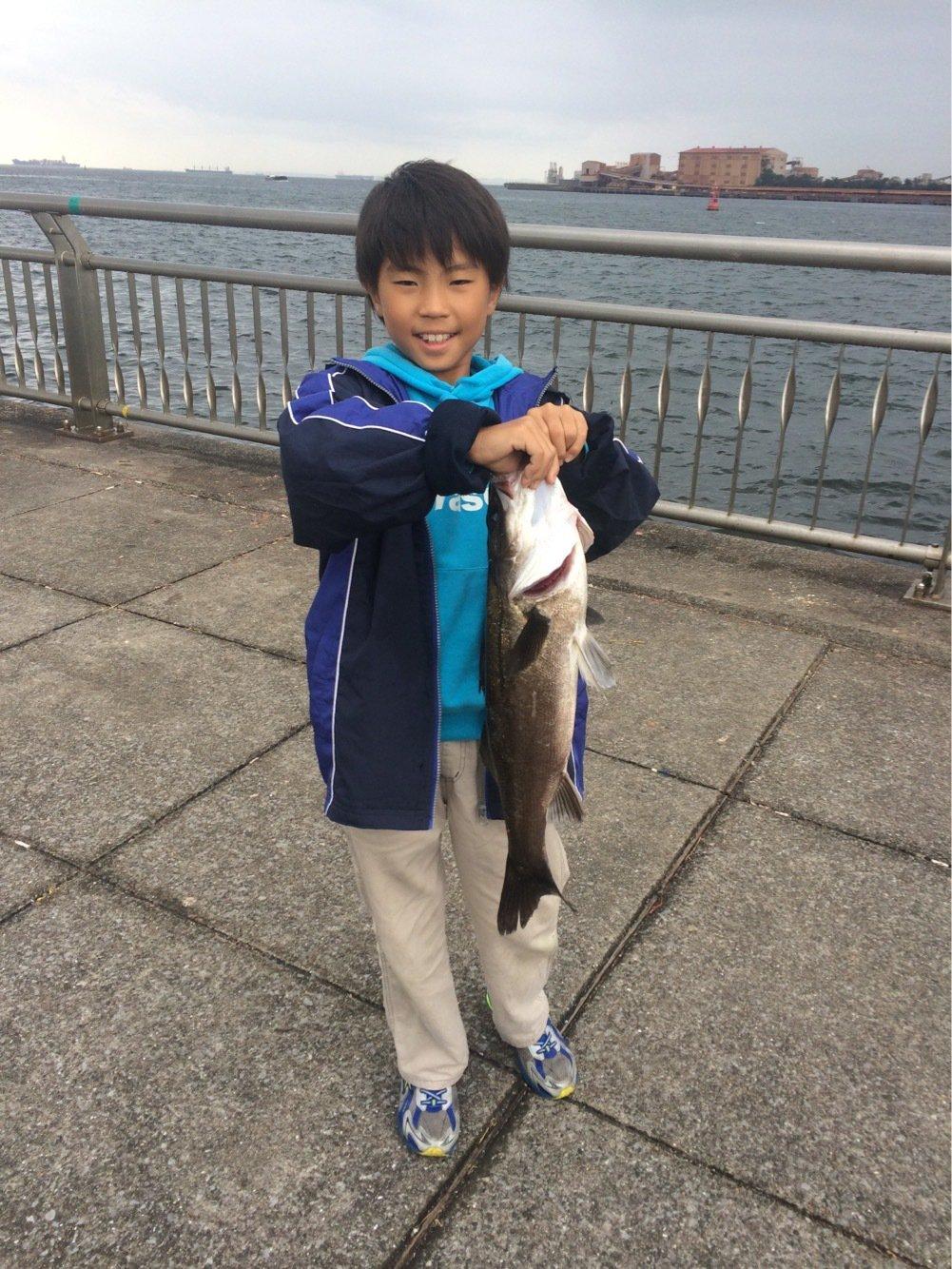 堤防釣りさんの投稿画像,写っている魚はスズキ