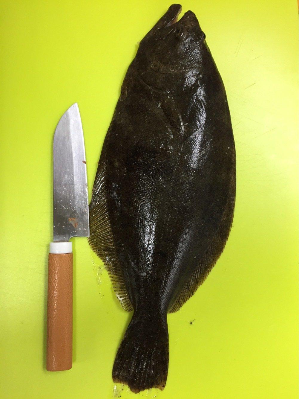ぽんさんの投稿画像,写っている魚は