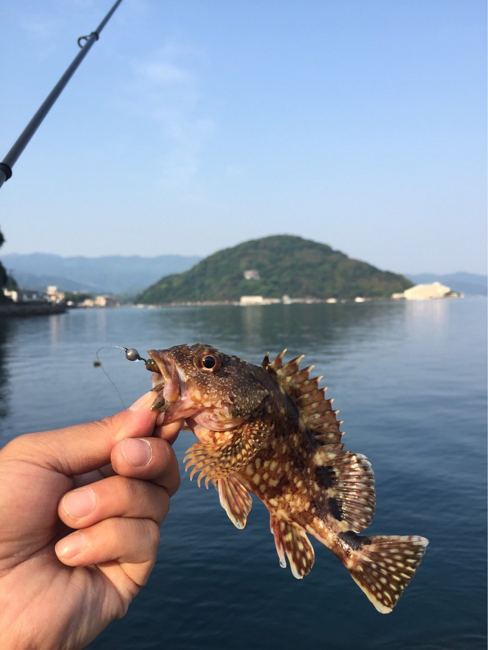 Koujiさんの投稿画像,写っている魚はカサゴ