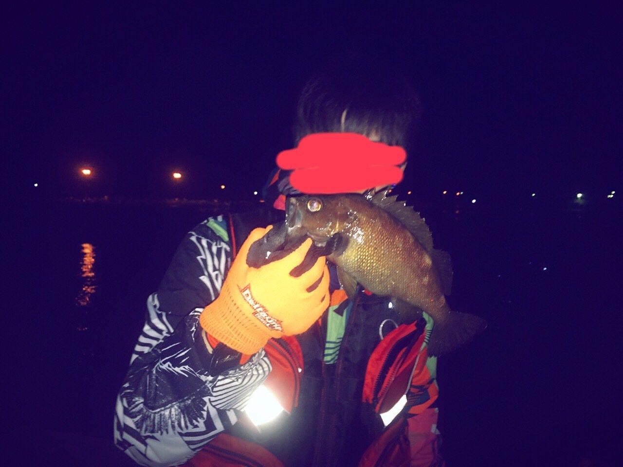 たーちんさんの投稿画像,写っている魚はアカガヤ