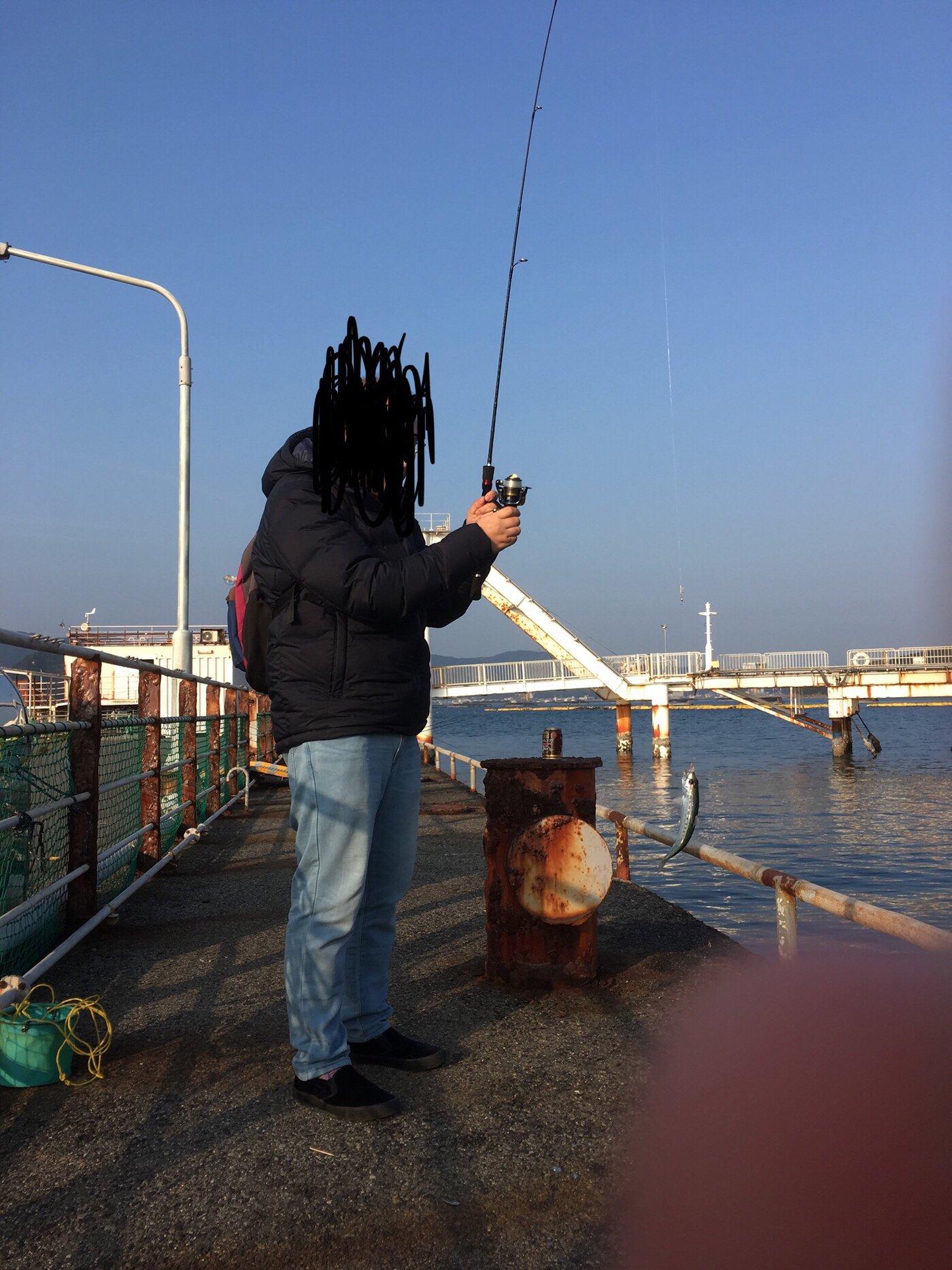 福丸さんの投稿画像,写っている魚はマイワシ,アジ