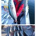 ポンさんの三重県伊賀市での釣果写真