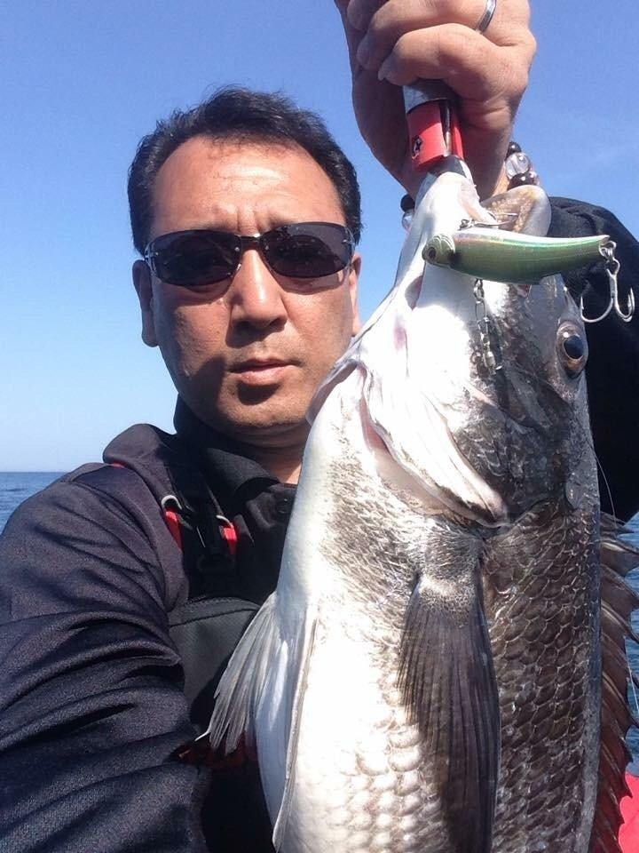 楠 雅文さんの投稿画像,写っている魚はクロダイ