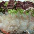 きみちゃんさんの福岡県筑紫郡での釣果写真