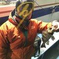 あきおさんの大阪府交野市での釣果写真
