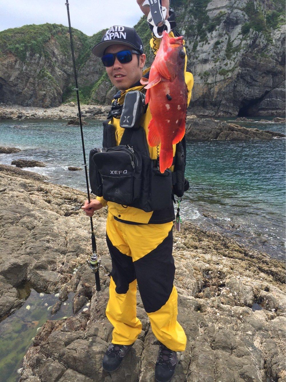 IFC代表さんの投稿画像,写っている魚はアカハタ
