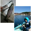 ゆじさんの神奈川県足柄下郡での釣果写真