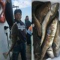 遊漁船 いざなみさんの北海道紋別市での釣果写真