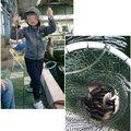 ゆじさんの千葉県君津市での釣果写真